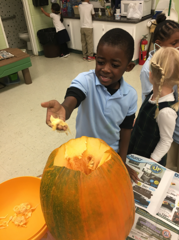 Exploring pumpkins...what's inside?
