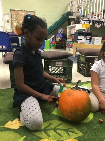 Exploring pumpkins...how tall is it?